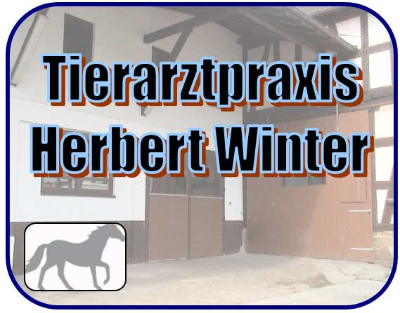 Veterinary for horses Herbert Winter